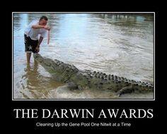 Darwin Awards (10 Photos)