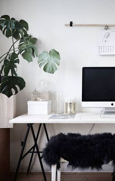 Work Spaces. Trends 2017