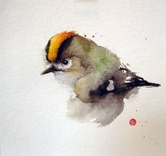 golden crowned kinglet water color - Google Search