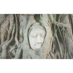 Ayuthaya - Thailand