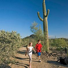 Worth the Trip: Arizona-Sonora Desert Museum in Tucson