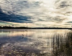 Sunrise By The Lake - The summer sun rises by a quiet lake at Haapavesi, Finland. The dramatic sky reflects on the surface of the water. Places Around The World, Around The Worlds, Beautiful Sunrise, Summer Sun, Finland, Amazing Photography, The Good Place, Natural Beauty, Sunset