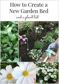 How to create a garden bed and a perennial plant list perennials how to create a garden bed and a perennial plant list mightylinksfo Image collections