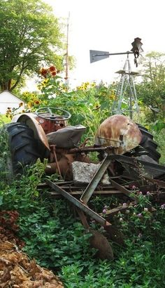 Old Tractor In The Weeds