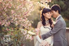 Sarnia Park Cherry Blossom wedding photos