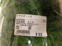 Rainbow Chard Japanese Label
