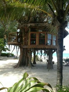 ...my kind of treehouse.