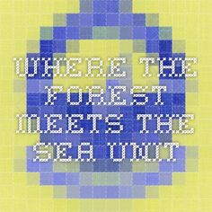 Where the Forest Meets the Sea unit