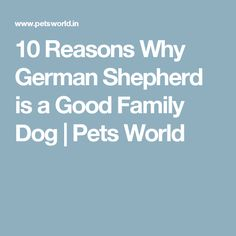 10 Reasons Why German Shepherd is a Good Family Dog | Pets World