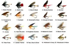The Essential Scottish Loch Trout Fly Selection | The Essential Fly
