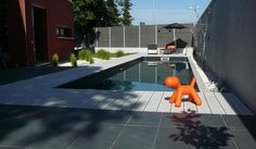 couloir de nage avec nage contre courant piscines pinterest couloir de nage couloir et. Black Bedroom Furniture Sets. Home Design Ideas