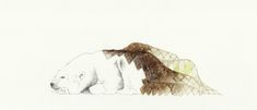 Ice Bear / Benjamin Graindorge / soft wild sofa visuel 10