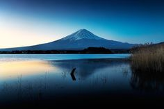 Mt.Fuji in winter morning by MIYAMOTO Y on 500px