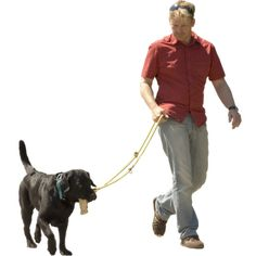 Man with Dog | Immediate Entourage