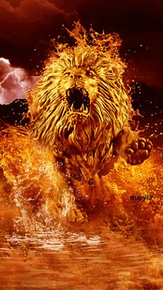 The perfect Lion Animated GIF for your conversation. Discover and Share the best GIFs on Tenor. Lion Images, Lion Pictures, Fire Lion, Flame Art, Fire Image, Lion Wallpaper, Lion Of Judah, Lion Art, Animation