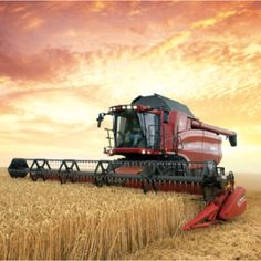 gotta love red tractors.. An Amazing pic!