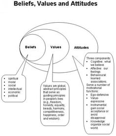 Visualising beliefs, values & attitudes