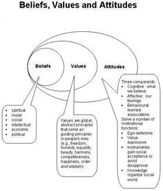 Visualising beliefs, values & attitudes