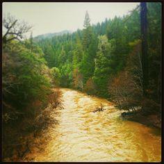 Caliparks : Van Damme State Park Van Damme, Park Photos, Park City, State Parks, California, River, Outdoor, Instagram, Outdoors