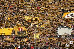 Dynamo Dresden   supporters
