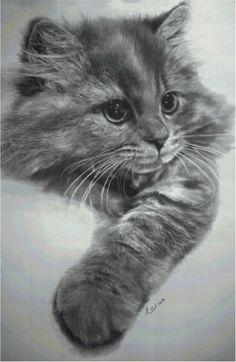 Gatto grigio puro a punto croce, download istantaneo di EmbroideryIdea su Etsy