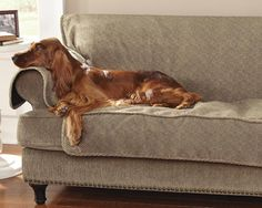 ... Protector: I Am Making This For My Leather Sectional. Using Attractive  Yet Washable Fabric. Elastic Strapping To Keep It In Place. Beautiful Lukey  Dog!