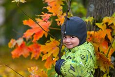 autumn maple leaves and cute baby with a sly look