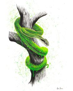 Drawing With Charcoal A snake painting I created on canvas with charcoal and acrylics. Snake Painting, Snake Drawing, Snake Art, Painting & Drawing, Snake Wallpaper, Surrealism Photography, Abstract Canvas Art, Realism Art, Australian Artists