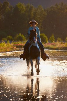 Horseback riding in the wilds of Seward, Alaska. - Horse Photos