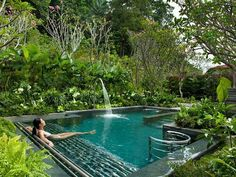 Dream garden - little pool in lush tropical garden setting.. . #tropical In harmony with nature..