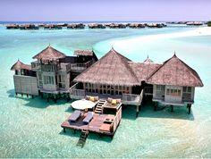 Ganbaroo loves the Malediven