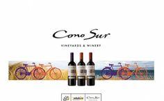 Los ciclistas del Tour de Francia brindarán con el vino chileno Cono Sur