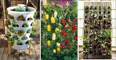 17 ideas para construir jardines verticales.