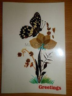 Pressed Dried Flower Crafts | Pressed Flowers - Greeting Cards - Part 1