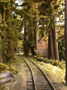 Abandoned Cabin on the Highline Ho Trains, Model Trains, Escala Ho, Ho Train Layouts, Miniature Trees, Train Pictures, Train Tracks, Scale Models, Railroad Tracks