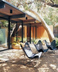 sheer black butterfly chairs outside santa monica midcentury home / sfgirlbybay