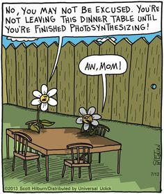 Botany humor.
