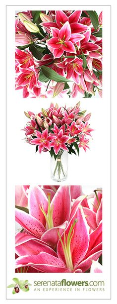 """Calliope"" flower bouquet #lilies #flowers #thankyou"