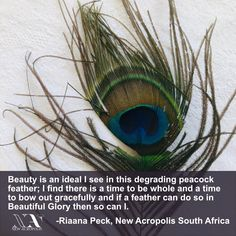 """""""Beauty is an ideal I see in this degrading peacock feather; I find there is a time to be whole and a time to bow out gracefully and if a feather can do so in Beautiful Glory then so can I."""" as written by Riaana Peck from New Acropolis South Africa. We asked members to take a photo of something that is beautiful to them and write about it. 🔥🔥🔥. New Africa, South Africa, Acropolis, How To Take Photos, Peacock, Feather, Bow, Beautiful, Beauty"""