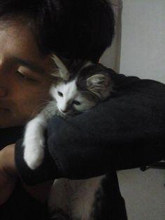 kitten Hanzell giving Leo a hug <3