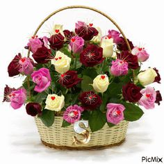 Roses basket - flower delivery to Greece with local florists Flowers Gif, Beautiful Bouquet Of Flowers, Beautiful Roses, Beautiful Flowers, Happy Birthday Flower, Rose Arrangements, Local Florist, Flower Boxes, Flower Delivery