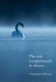 The real is experienced in silence. - Nisargadatta Maharaj, indian guru of non-dualism Silence Quotes, Rumi Quotes, Wisdom Quotes, Words Quotes, Positive Quotes, Life Quotes, Inspirational Quotes, Sayings, Zen Quotes
