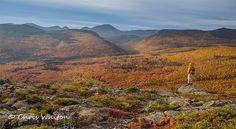 Rainy Day Foliage Photography - New England fall foliage