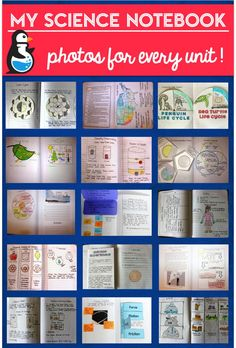 Browse by topic to see photos of my science notebook, find paid resources and freebies, and get lots of ideas!