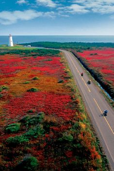 Wondering when is the best time to visit Canada? See this ultimate guide for the best places to go in Canada each month, plus where to stay. Indian Summer, Lonely Planet, Westminster, Acadie, New Brunswick Canada, Canada Holiday, Atlantic Canada, Atlantic Ocean, Paisajes