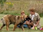 Mayslake Dog Park in Oak Brook, IL - Dogs with Forest Preserve District off-leash dog area permits can enjoy Mayslake's fully fenced off-leash…