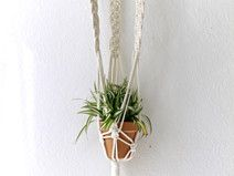 Macrame Wall Hanging | Plant Holder