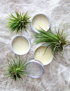 How to Make a Simple Homemade Solid Perfume with beeswax, a carrier oil and essential oils.