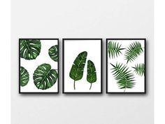 Set of 3 tropical leaf prints a4 wall art botanical leaf