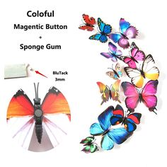 Amazon.com: 12PCS 3D Butterfly Stickers Wall Stickers Crafts Butterflies with Sponge Gum and Pin(11 Colors): Home & Kitchen